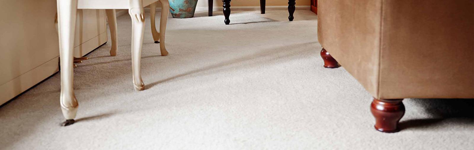 Carpet-Cleaning-Slide-3