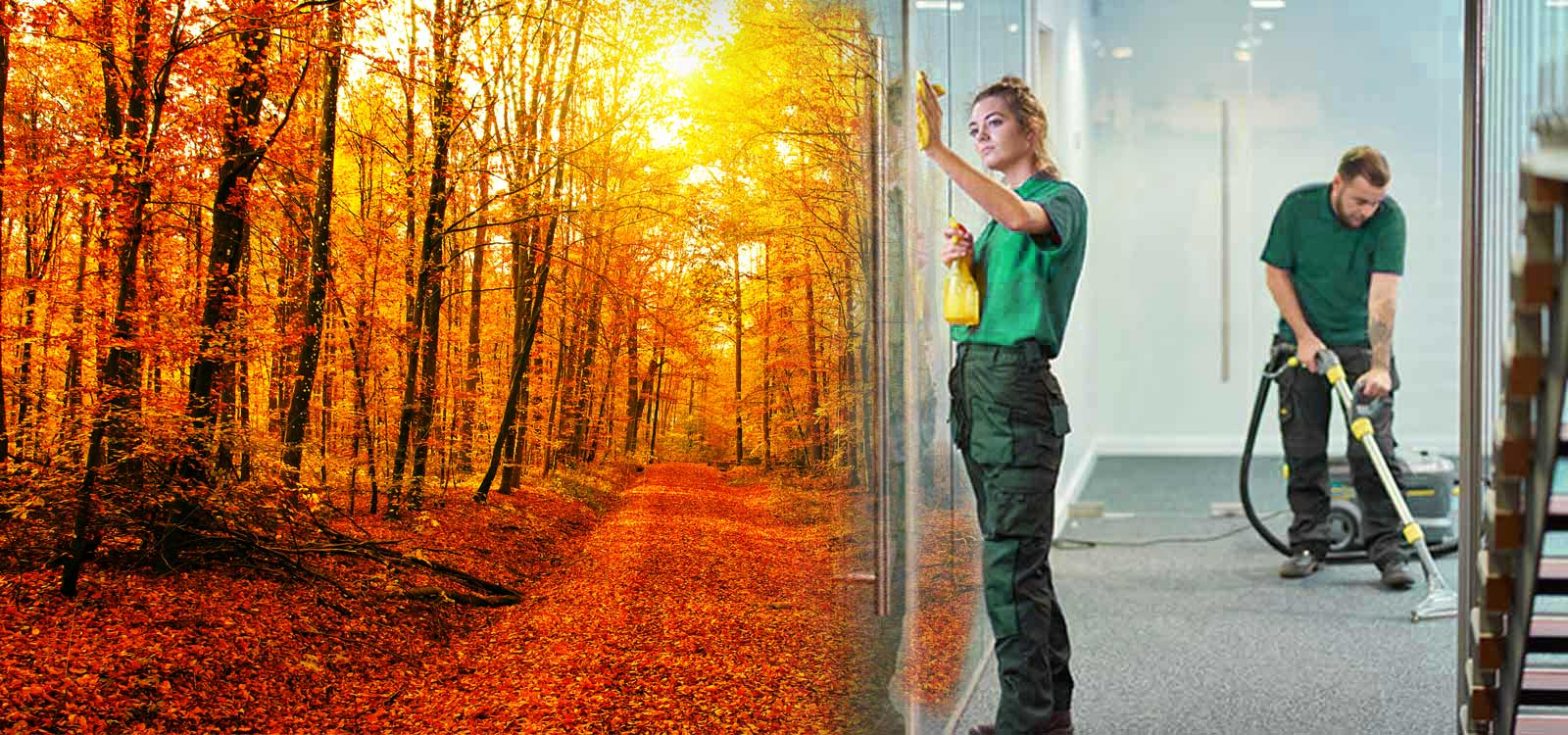 Commercial-Cleaning-Autumn-Cleaning-2