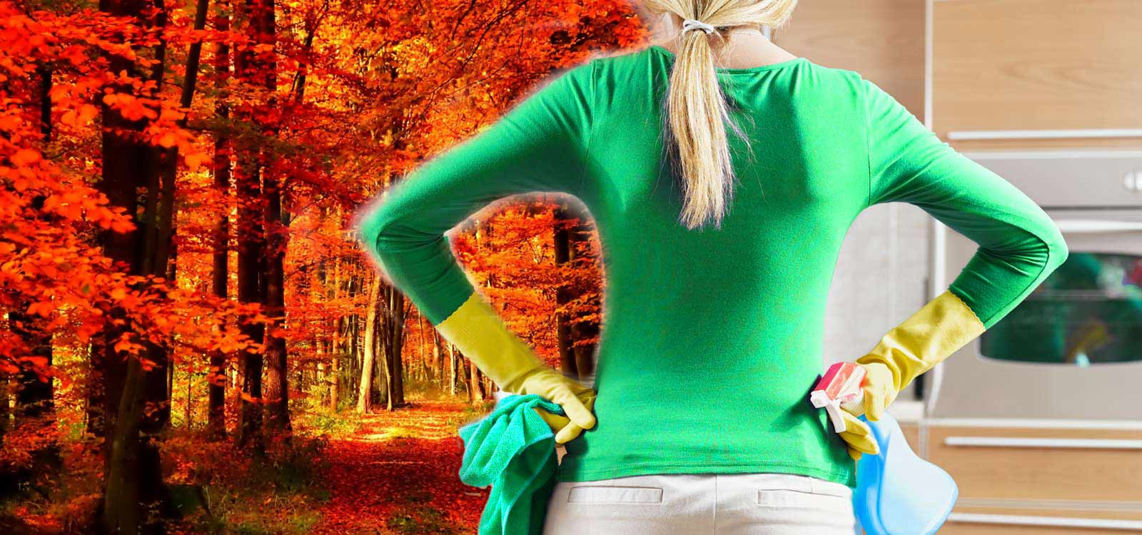 Residential-Cleaning-Autumn--Cleaning-2